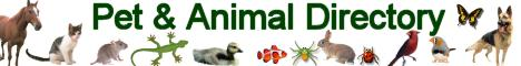 Best Animal Websites
