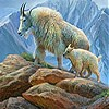 Mountain Goat Slide Puzzle Game Online