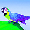 Parrot on Leaf puzzle Game Online